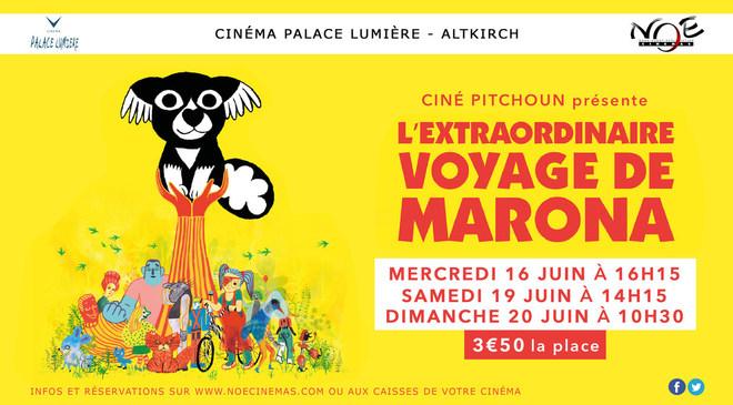 Ciné Pitchoun : L'Extraordinaire Voyage de Marona