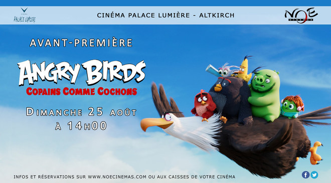 ANGRY BIRDS, COPAINS COMME COCHONS - avant première CINECOOL