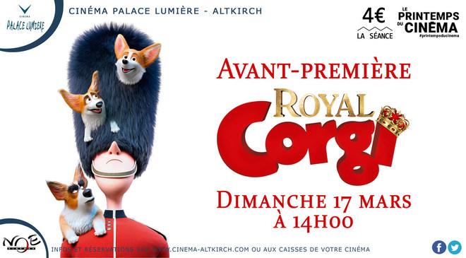ROYAL CORGI - Avant-Première